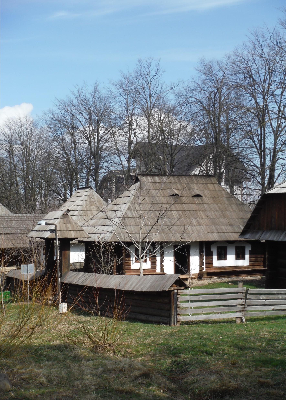 muzeul satului 1